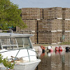 Photo of lobster traps by GlennPeb/sxc.hu.