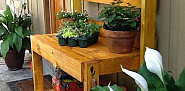 Karen's potting bench made out of pallets via Hometalk.com.
