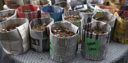 Newspaper seed pots and photo by Sayward Rebhal.