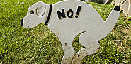 This sign is cute, but probably ineffective.  Photo by mslavick on Flickr.