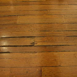 Hardwood floor warping articles for Hardwood floors warping