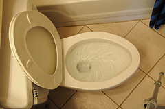 http://www.networx.com/article/how-to-flush-your-toilet-and-waste-less