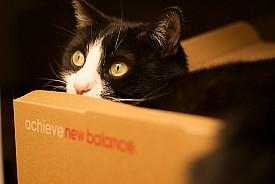 Photo: Jeffrey/Flickr