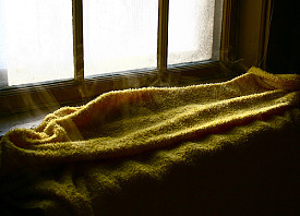 A side benefit of radiators... Photo: Liz West/Flickr