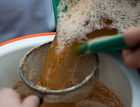 Filtering cider. (Photo: Ben Garney/Flickr)
