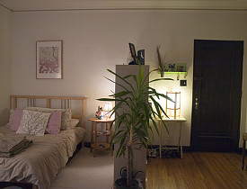 How to Create Private Bedroom Space in a Small Loft or Studio ...