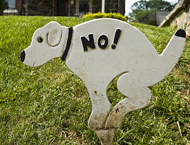 Bathroom Signs No Pooping how to stop dogs from using your lawn as a bathroom - networx