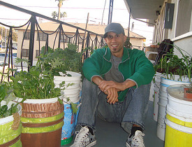 Mike Lieberman in his urban organic garden in Los Angeles.