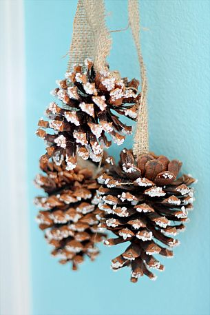 Epsom salt encrusted pine cones by Domestically Speaking via Hometalk.com.