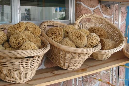 Photo: alcinoe/morguefile.com