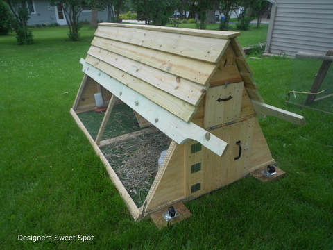 Going bananas for backyard chickens networx for Big chicken tractor
