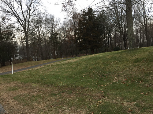 2-acre lot cleaned up