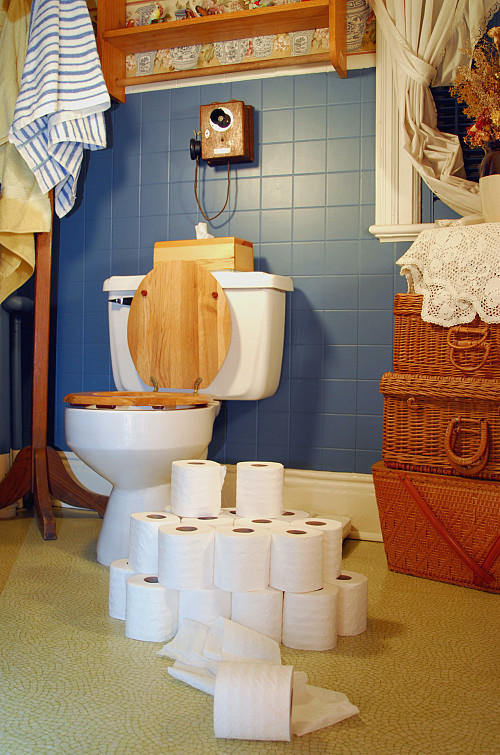 Bathroom Remodel How Toilet Installation Affects Cost Networx