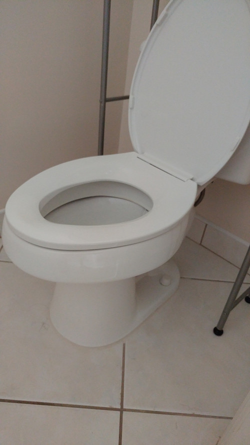 Toilets are working fine now