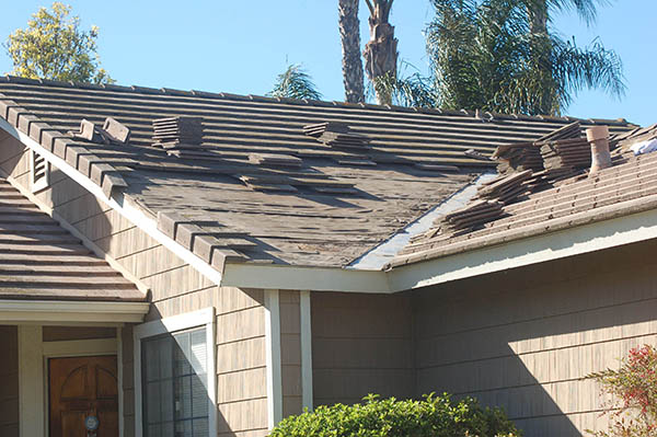 DURING: Roof tile removed for leak repair