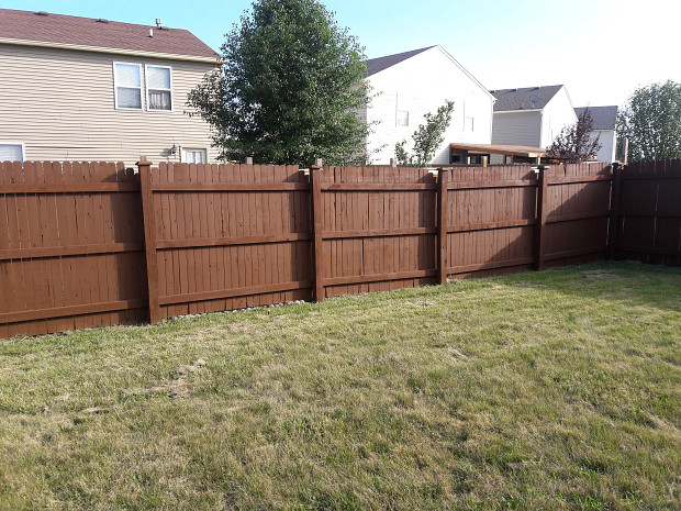 Freshly stained fence