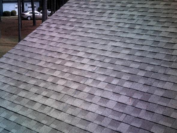 Roof Rx ...