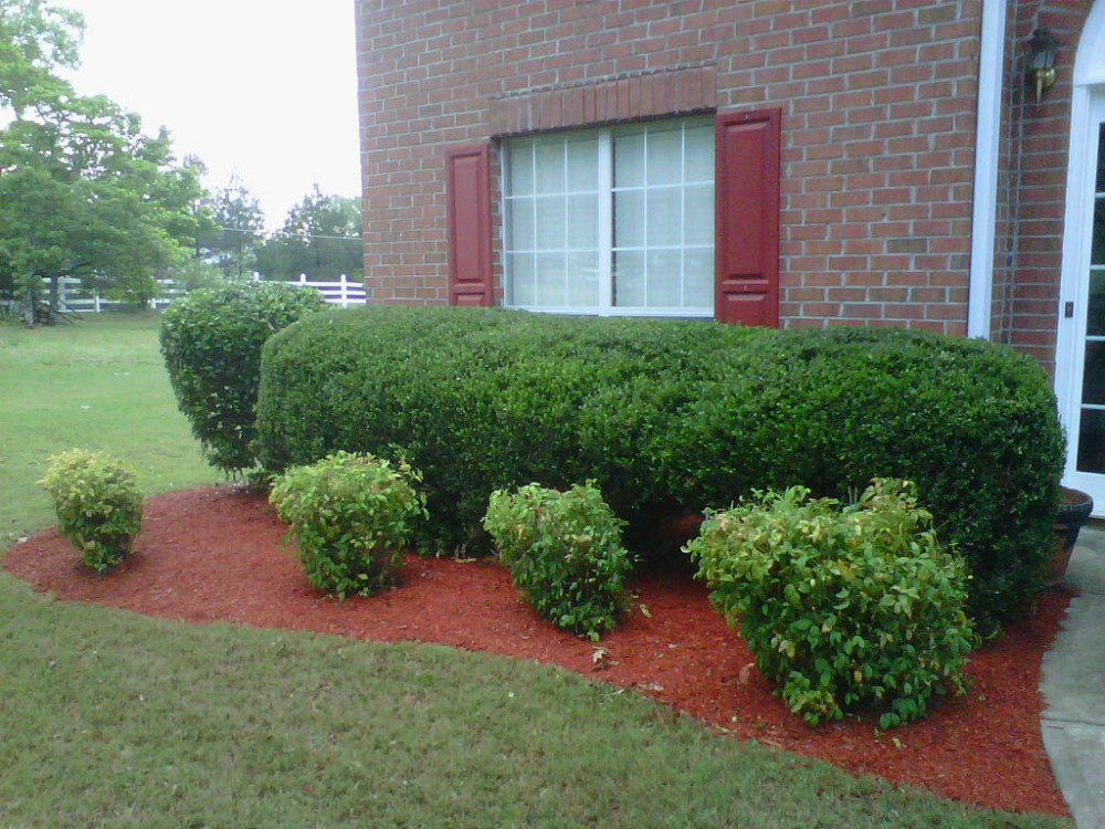 Friendly, Honest And Efficient Lawn Maintenance Business Specializing In  Lawn Mowing And Offering Basic Landscaping Services. Appointments Are  Recommended ...
