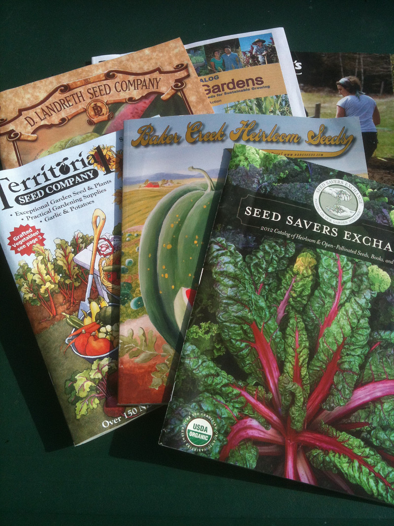 A Guide To Heirloom Seed Catalogs Networx