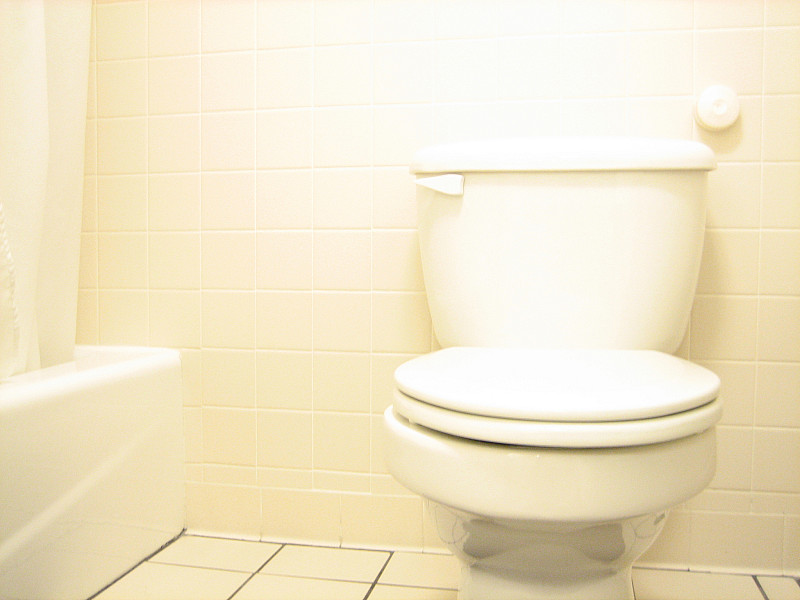 Common Problems With Low Flow Toilets Networx